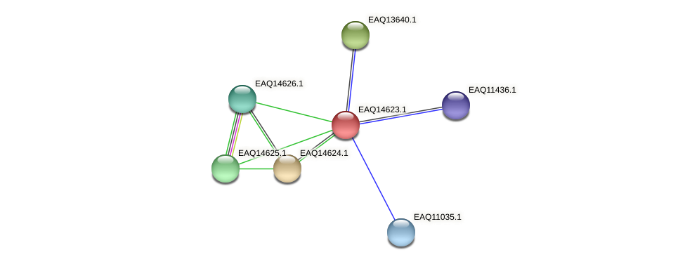 RB2654_18608 protein (Maritimibacter alkaliphilus) - STRING interaction network