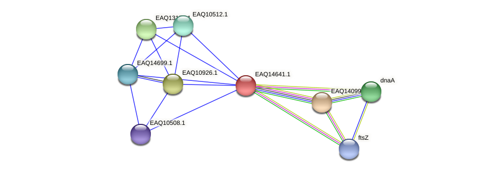 RB2654_18698 protein (Maritimibacter alkaliphilus) - STRING interaction network