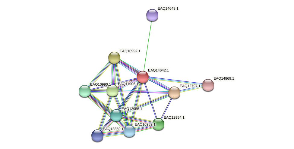RB2654_18703 protein (Maritimibacter alkaliphilus) - STRING interaction network