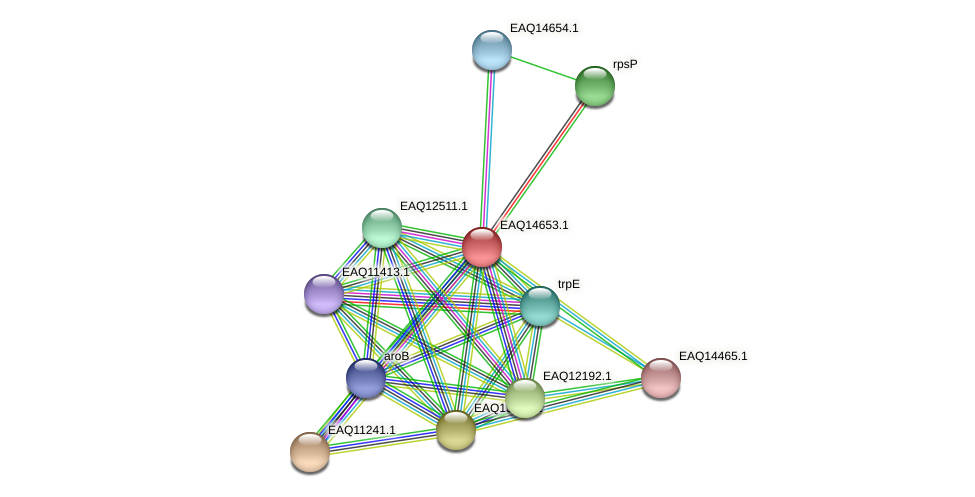 RB2654_18758 protein (Maritimibacter alkaliphilus) - STRING interaction network