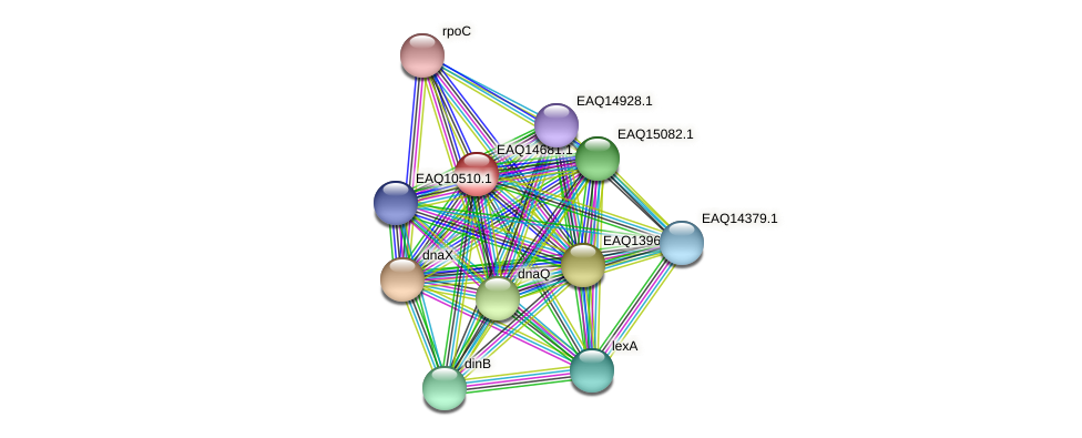 RB2654_18898 protein (Maritimibacter alkaliphilus) - STRING interaction network