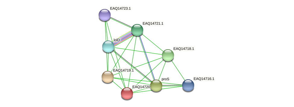 RB2654_19093 protein (Maritimibacter alkaliphilus) - STRING interaction network