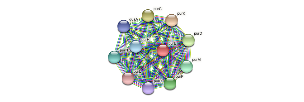 purE protein (Maritimibacter alkaliphilus) - STRING interaction network