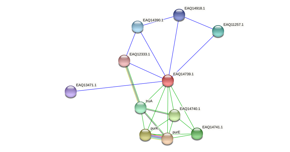 RB2654_19188 protein (Maritimibacter alkaliphilus) - STRING interaction network