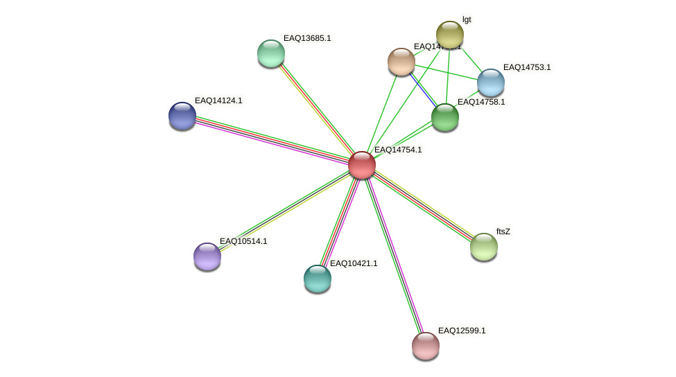 RB2654_19263 protein (Maritimibacter alkaliphilus) - STRING interaction network
