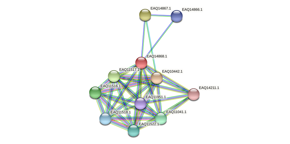 RB2654_19833 protein (Maritimibacter alkaliphilus) - STRING interaction network