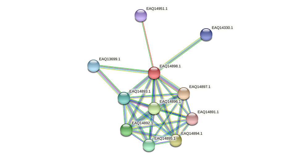 RB2654_19983 protein (Maritimibacter alkaliphilus) - STRING interaction network