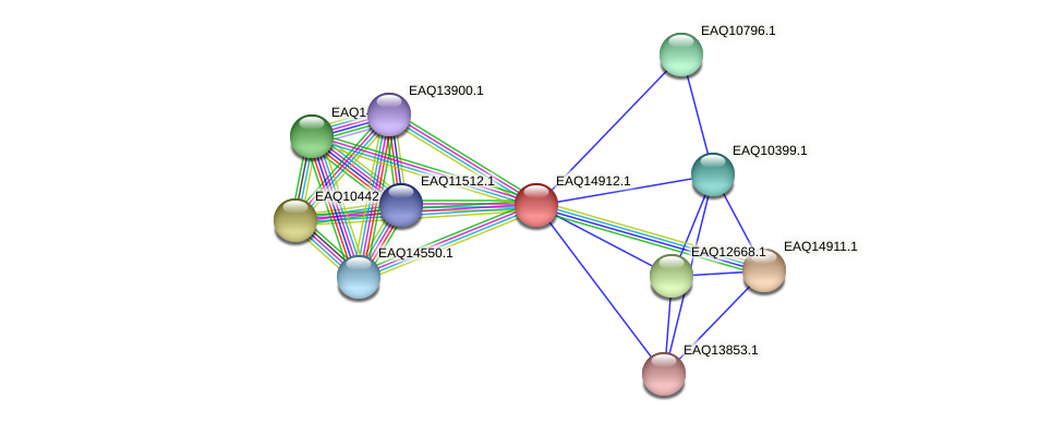 RB2654_20053 protein (Maritimibacter alkaliphilus) - STRING interaction network