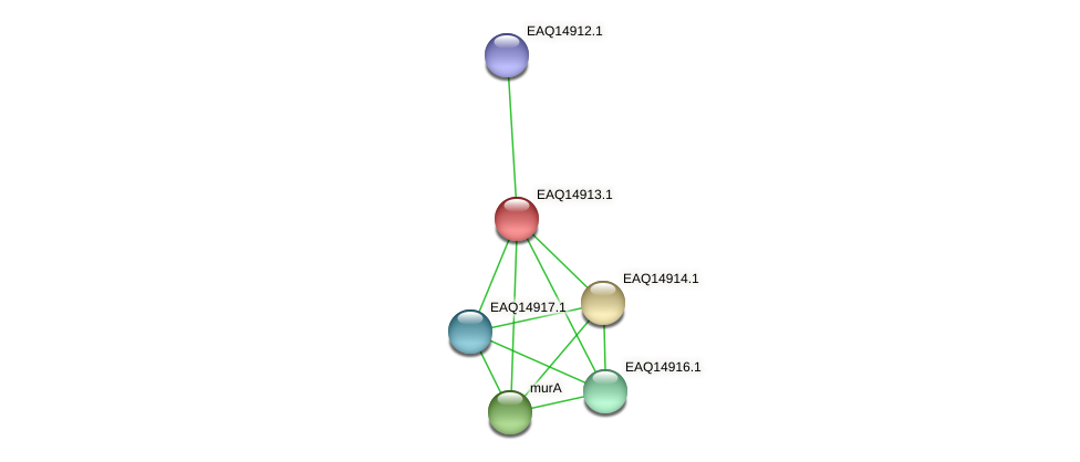 RB2654_20058 protein (Maritimibacter alkaliphilus) - STRING interaction network