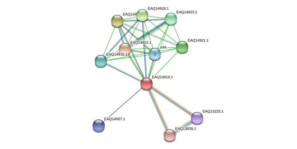 RB2654_20088 protein (Maritimibacter alkaliphilus) - STRING interaction network