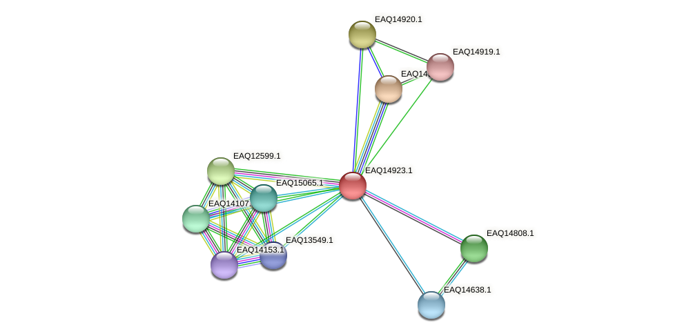 RB2654_20108 protein (Maritimibacter alkaliphilus) - STRING interaction network