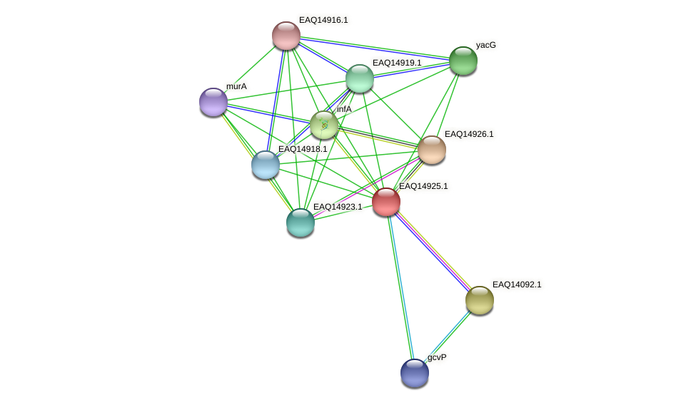 RB2654_20118 protein (Maritimibacter alkaliphilus) - STRING interaction network
