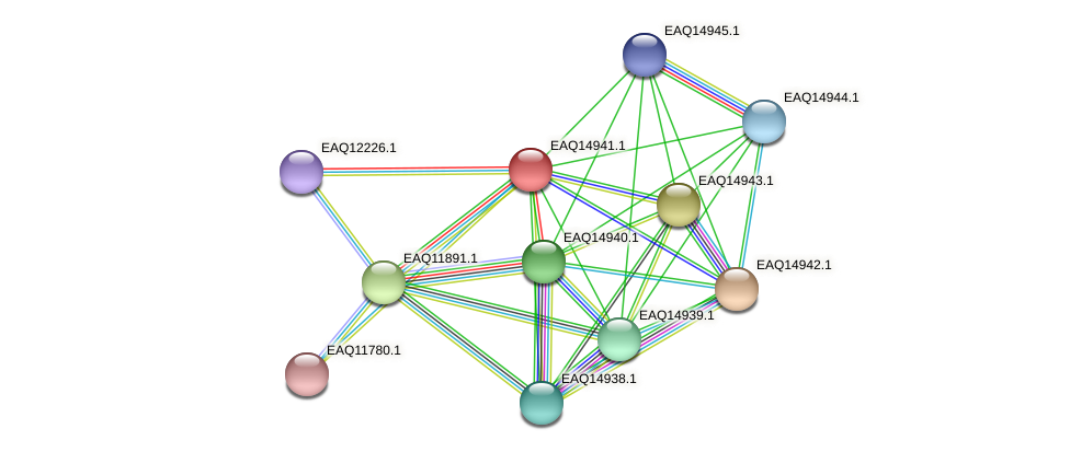 RB2654_20198 protein (Maritimibacter alkaliphilus) - STRING interaction network