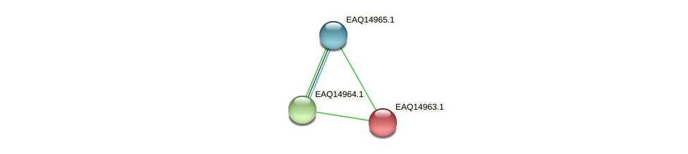 RB2654_20308 protein (Maritimibacter alkaliphilus) - STRING interaction network