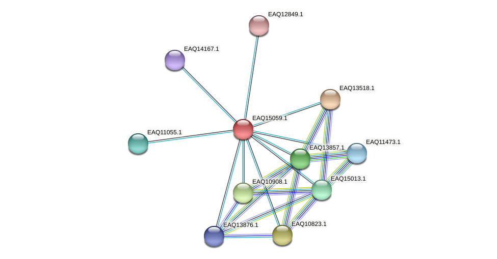 RB2654_20788 protein (Maritimibacter alkaliphilus) - STRING interaction network