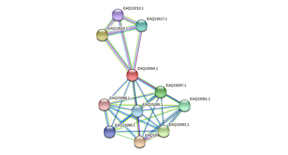 RB2654_20963 protein (Maritimibacter alkaliphilus) - STRING interaction network