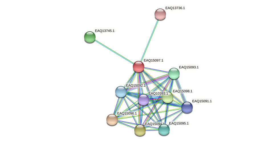 RB2654_20978 protein (Maritimibacter alkaliphilus) - STRING interaction network