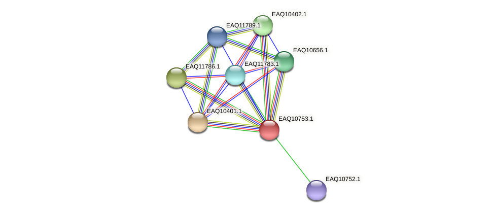 RB2654_21188 protein (Maritimibacter alkaliphilus) - STRING interaction network