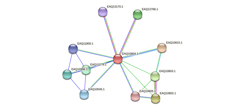 RB2654_21588 protein (Maritimibacter alkaliphilus) - STRING interaction network