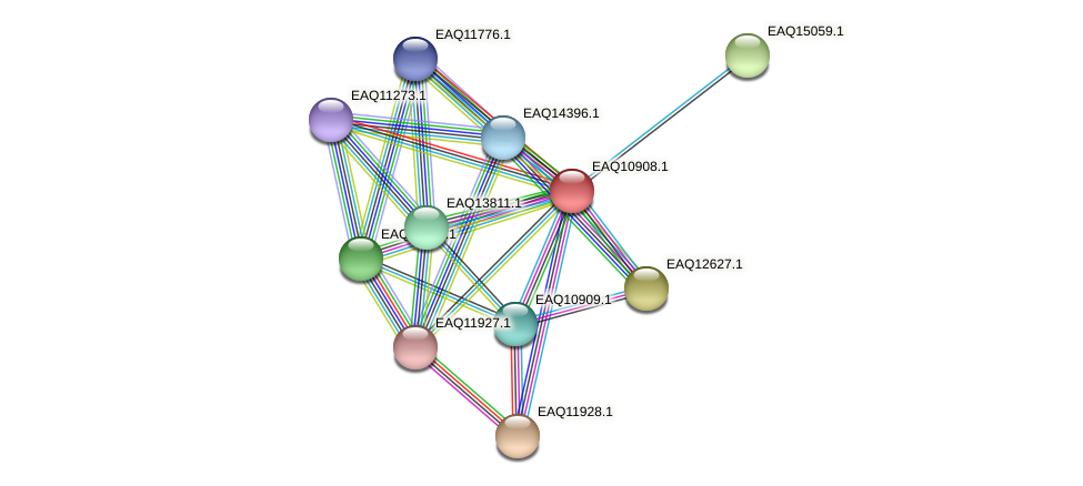 RB2654_22108 protein (Maritimibacter alkaliphilus) - STRING interaction network