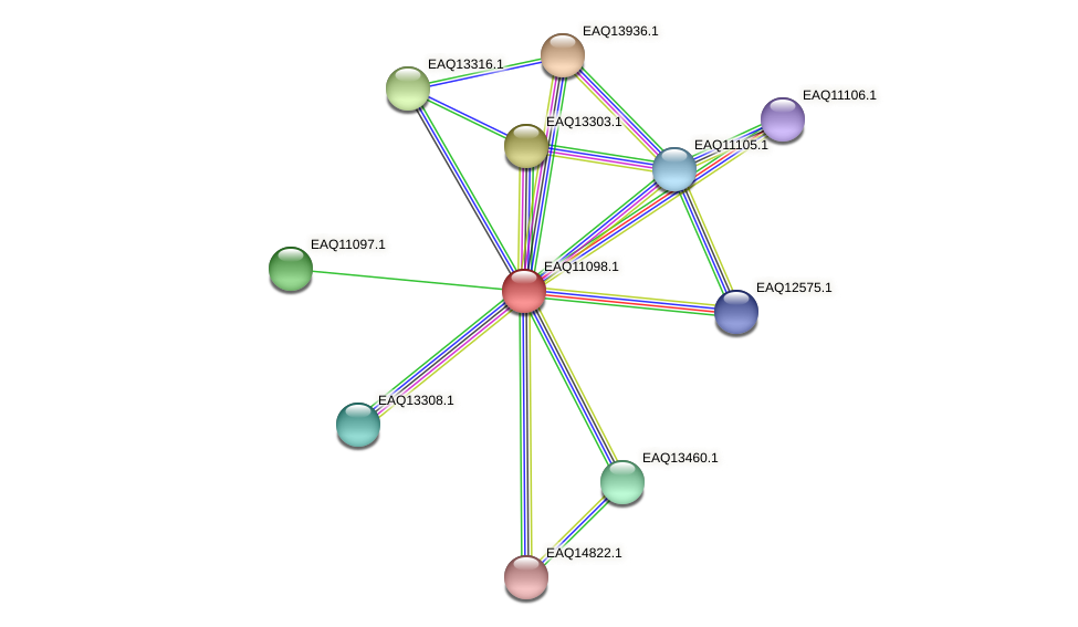 RB2654_22723 protein (Maritimibacter alkaliphilus) - STRING interaction network