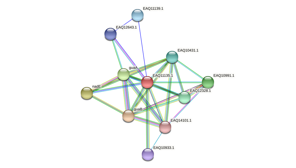 RB2654_22908 protein (Maritimibacter alkaliphilus) - STRING interaction network
