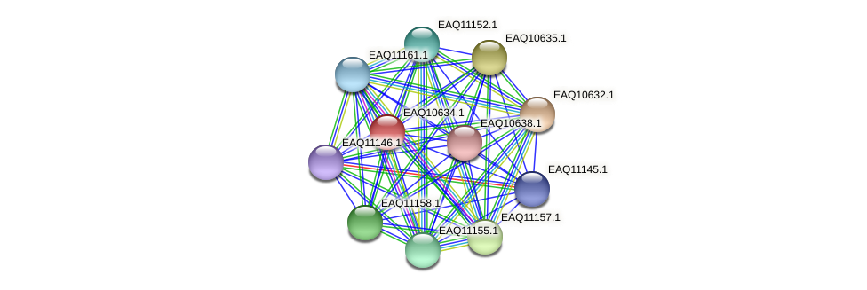 RB2654_23053 protein (Maritimibacter alkaliphilus) - STRING interaction network