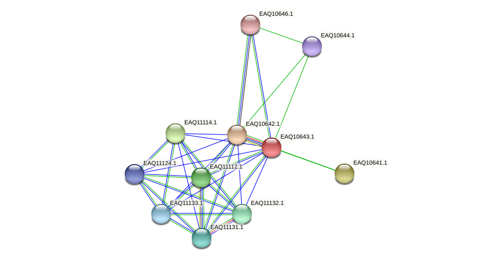 RB2654_23098 protein (Maritimibacter alkaliphilus) - STRING interaction network