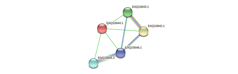 RB2654_23103 protein (Maritimibacter alkaliphilus) - STRING interaction network