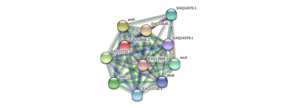RB2654_23113 protein (Maritimibacter alkaliphilus) - STRING interaction network