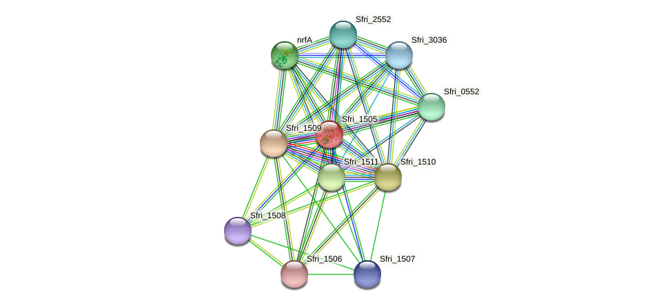 Sfri_1505 protein (Shewanella frigidimarina) - STRING interaction network