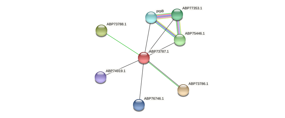 ABP73787.1 protein (Shewanella putrefaciens) - STRING interaction network