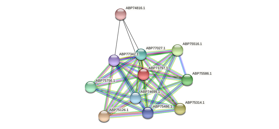 ABP73797.1 protein (Shewanella putrefaciens) - STRING interaction network