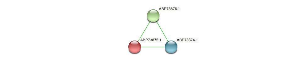 ABP73875.1 protein (Shewanella putrefaciens) - STRING interaction network
