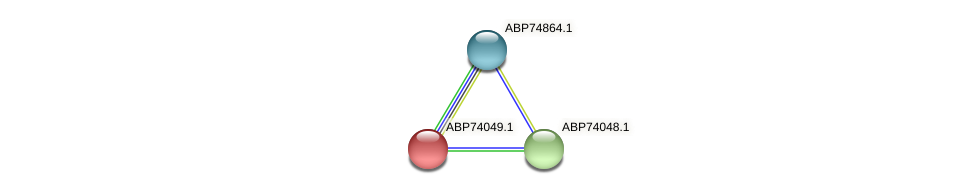 ABP74049.1 protein (Shewanella putrefaciens) - STRING interaction network