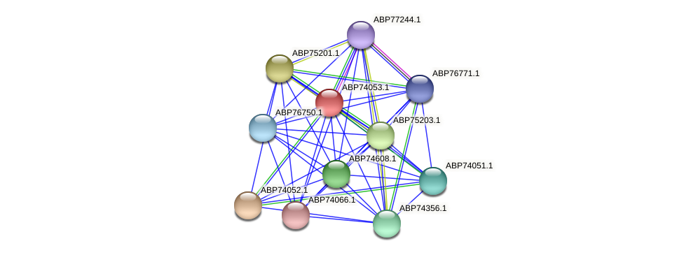 ABP74053.1 protein (Shewanella putrefaciens) - STRING interaction network