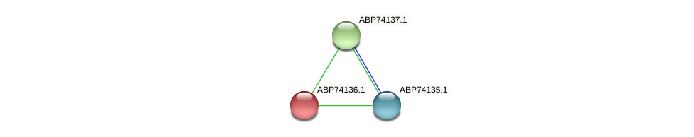 ABP74136.1 protein (Shewanella putrefaciens) - STRING interaction network