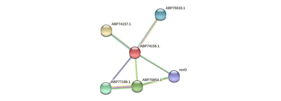 ABP74156.1 protein (Shewanella putrefaciens) - STRING interaction network