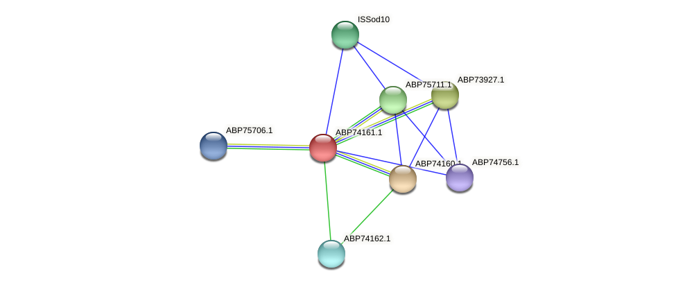 ABP74161.1 protein (Shewanella putrefaciens) - STRING interaction network