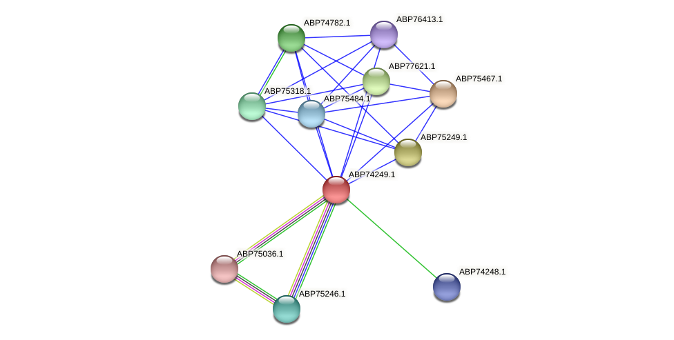 ABP74249.1 protein (Shewanella putrefaciens) - STRING interaction network