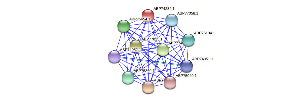 ABP74284.1 protein (Shewanella putrefaciens) - STRING interaction network