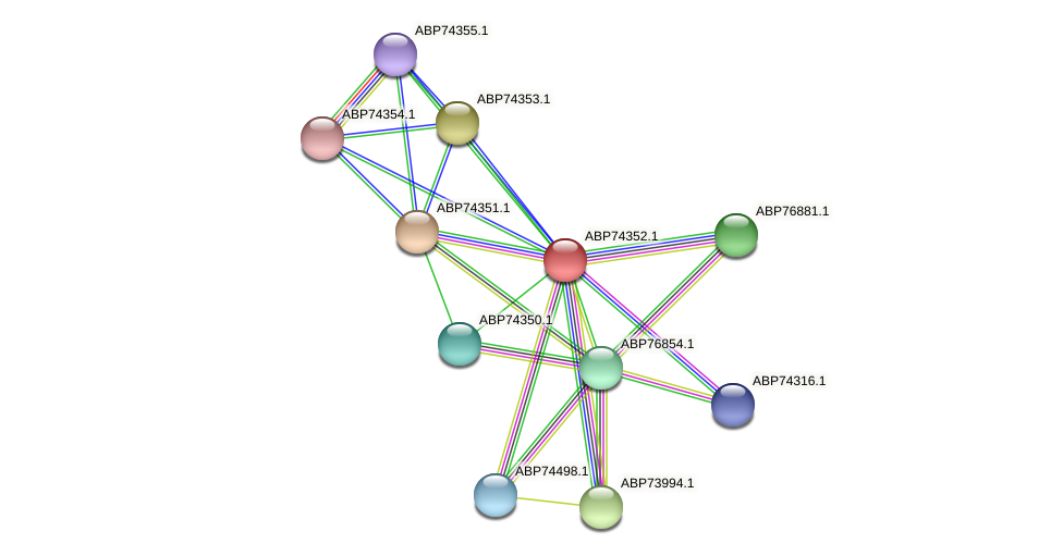 ABP74352.1 protein (Shewanella putrefaciens) - STRING interaction network