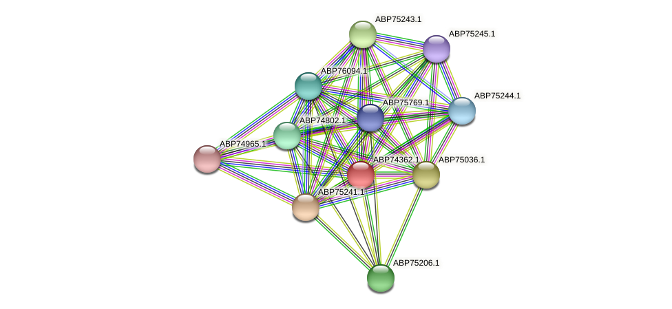 ABP74362.1 protein (Shewanella putrefaciens) - STRING interaction network