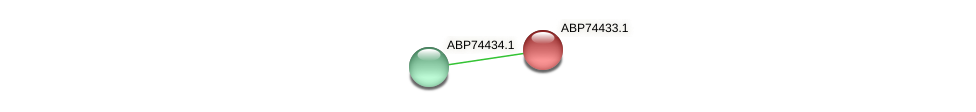 ABP74433.1 protein (Shewanella putrefaciens) - STRING interaction network