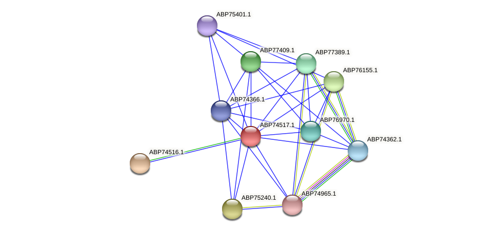 ABP74517.1 protein (Shewanella putrefaciens) - STRING interaction network
