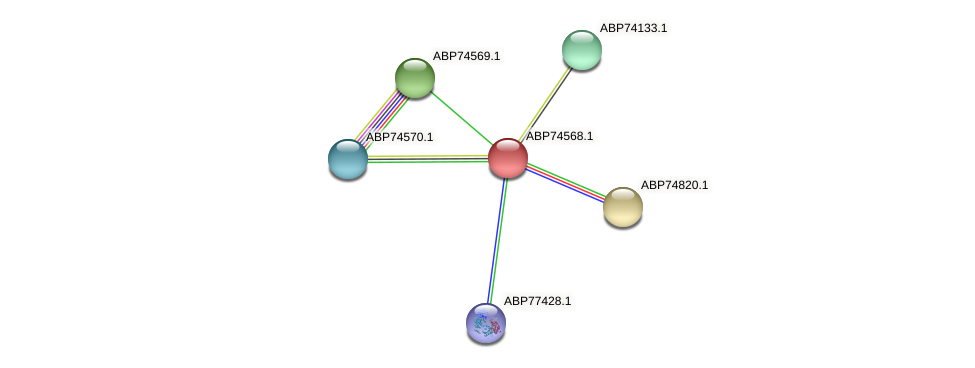 ABP74568.1 protein (Shewanella putrefaciens) - STRING interaction network