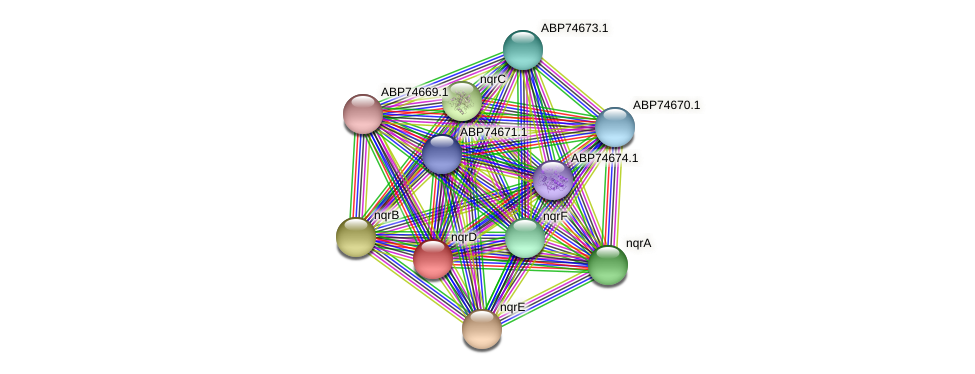 ABP74581.1 protein (Shewanella putrefaciens) - STRING interaction network