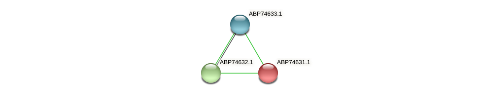 ABP74631.1 protein (Shewanella putrefaciens) - STRING interaction network