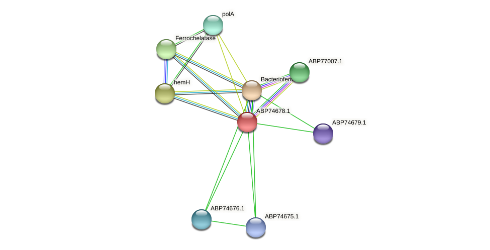 ABP74678.1 protein (Shewanella putrefaciens) - STRING interaction network