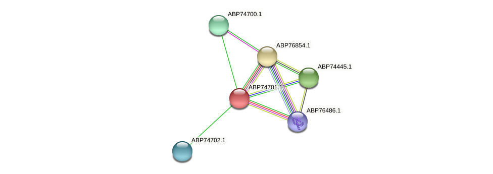 ABP74701.1 protein (Shewanella putrefaciens) - STRING interaction network
